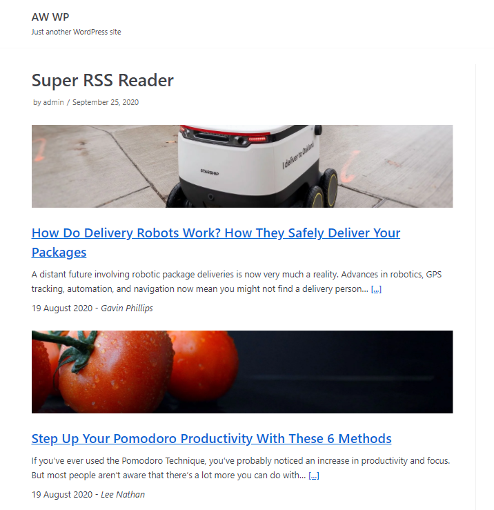 Super RSS Reader - PRO custom template example