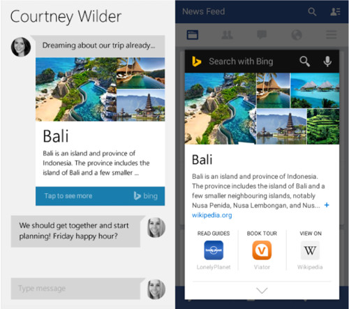 Bing Developers Access to the API Knowledge Graph 1