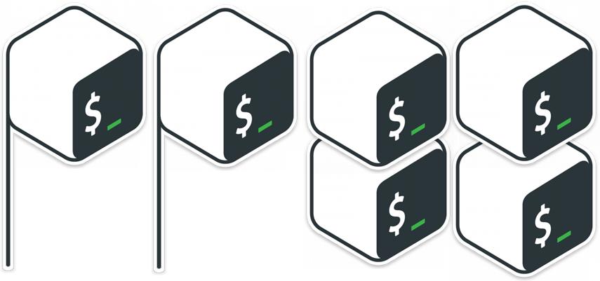 PPBS Logo